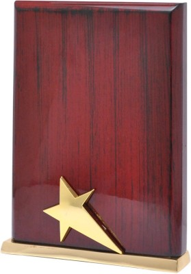 Frontfoot Sports FTK - 15099 (23.75 cm) Trophy