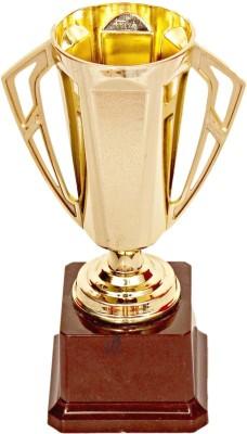 Homeshopeez Champion Trophy