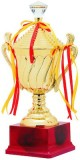 Aark India Champion Trophies/Awards With...