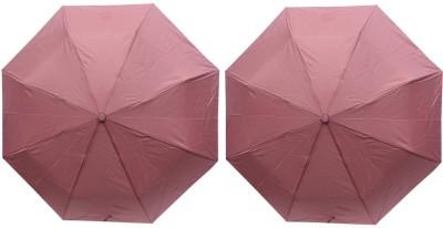 ARIP 3 Fold Pakiza Umbrella