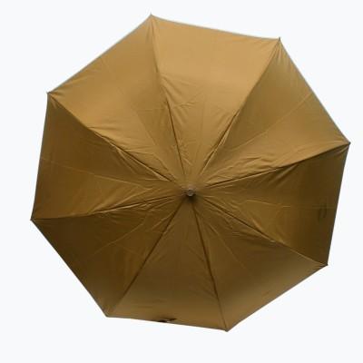 ARIP 2 Fold Citizen Umbrella