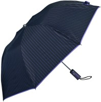 Elephant Brand 2 Fold Reva Automatic Umbrella(Black, Purple)