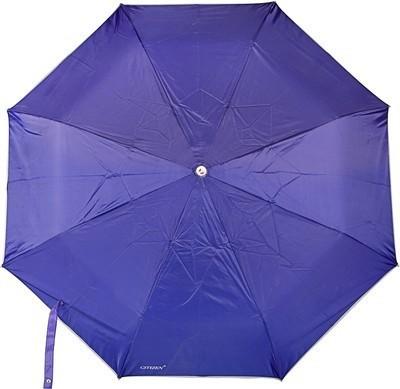 DIZIONARIO UMBRELLA-BLUE_A Umbrella