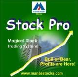Mandestocks Stock Pro (1 Year, 1 PC)