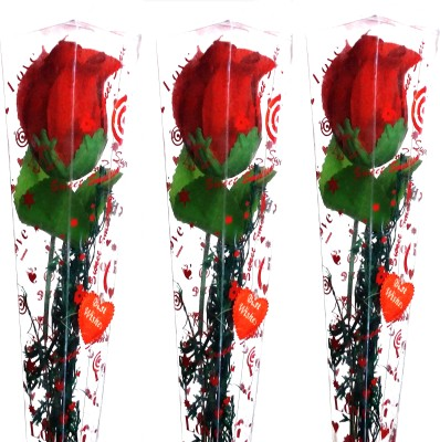 99DailyDeals R59 Combo Of 3 Simple Rose For Valentines Day Gift Set