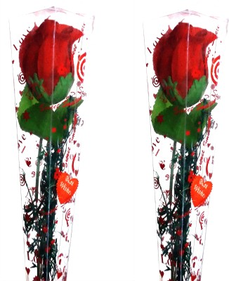99DailyDeals R58 Combo Of 2 Simple Rose For Valentines Day Gift Set