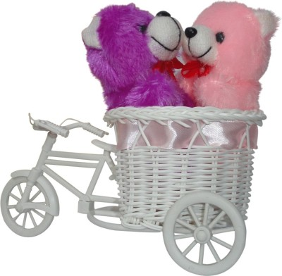 CTW Cute Couple Soft toyTeddy With Decorative Cycle Gift set Gift Set