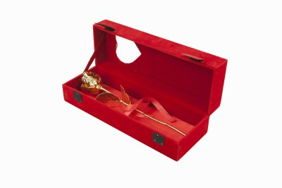 GIFTZ Gold plated Rose 6 inch Gift Set