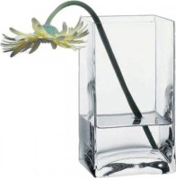 Pasabahce Glass Vase(7 inch, Clear)