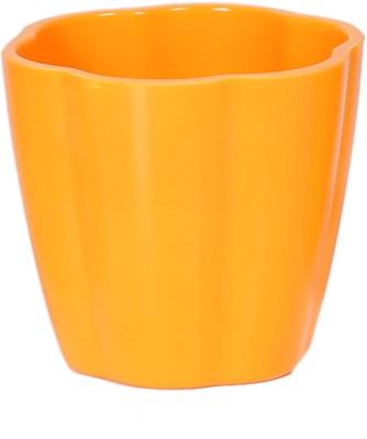 Evergreen Plastic Vase
