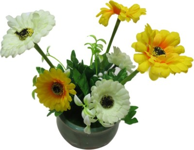 DCS Beautiful and Attractive Flowers with Ceramic Vase