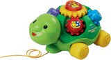 VTech Pull and Play Turtle (Multicolor)