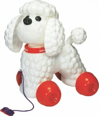 Anand Poodle Dog