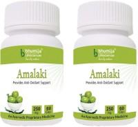Bhumija Lifesciences Amalaki Capsules 60's(2 No)