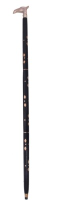 Royal RAE8013 Walking Stick