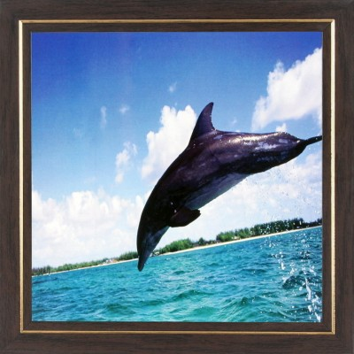 WENS Dolphin Wall Art In Sunshine