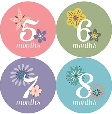 One Little Piggy Designs This Little Piggy Baby Month Stickers