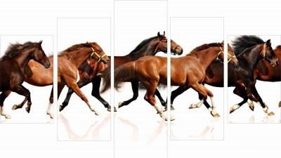 GoHooked Running Horses Wall art