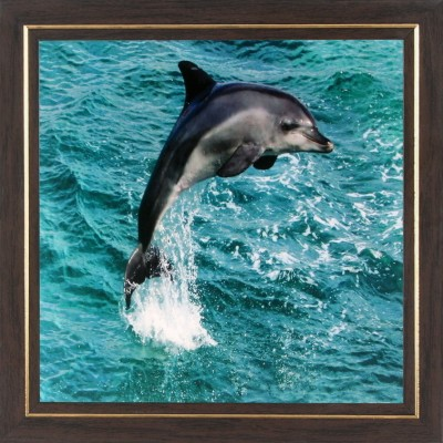 WENS Dolphin In Sea Wall Art