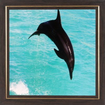 WENS Jumping Dolphin In Water Wall Art