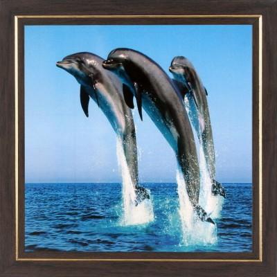 WENS Dancing Dolphin Wall Art