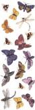 Fuseworks Fuse Art Decals, Bug-A-Boos (B...