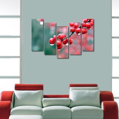 999 Store Multiple Frames Printed Strawberries like Modern Wall Art Painting - 5 Frames (148 X 76 Cms)