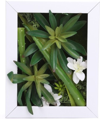 Fourwalls Artificial Succulent Wall Hanging Garden - 3(20 cm X cm 25, White, Green)