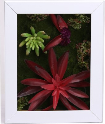 Fourwalls Artificial Succulent Wall Hanging Garden - 4(20 cm X cm 25, Multicolor)