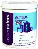 Asian Paints AX-GR-10L Clear Emulsion Wa...
