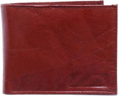 Swisswin Men Brown Artificial Leather Wallet
