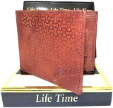 Lifetime Men Tan Artificial Leather Wall...
