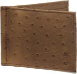 Mob Men Brown Genuine Leather Wallet (8 ...