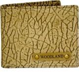Woodland Men Khaki Genuine Leather Walle...