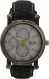 BJA 214_WB14 Analog Watch  - For Men