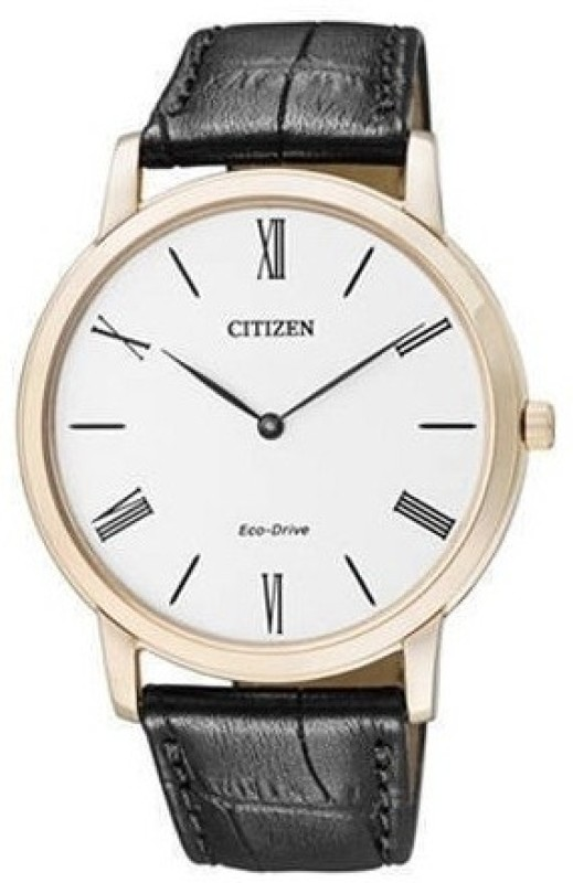 Citizen AR1113 12B Analog Watch For Men