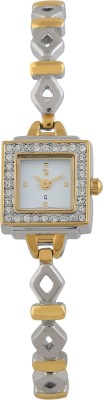 Piere Renee NB-092L-GldSteel Analog Watch  - For Women