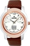 Artek -4014-SILVER-COPPER Analog Watch  ...