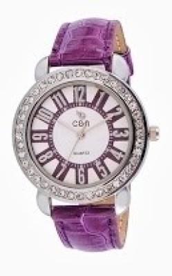Chappin & Nellson CN-L-02-Purple Analog Watch  - For Women