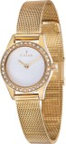 Fjord FJ-6031-33 Analog Watch  - For Wom...