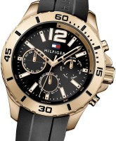 e59251381d0ffb Tommy Hilfiger TH1791145J Analog Watch - For Men