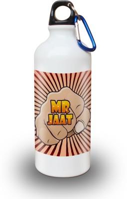 Sky Trends Gift Mr Jaat Gifts For Friend 600 ml Water Bottle
