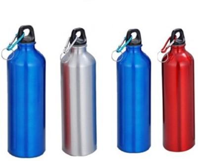 Blue Birds opaque series 750 ml Water Bottles