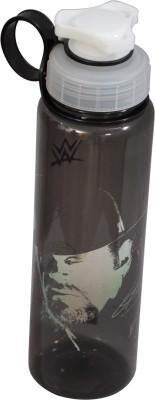WWE UNDER TAKER 700 ml Water Bottle