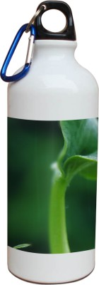 Tiedribbons Our Earth_Our Care_World Envronment Day_Green Twig _White Sippers 600 ml Water Bottle