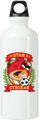 Exoctic Silver Kool Kids Series 600 ml Water Bottle