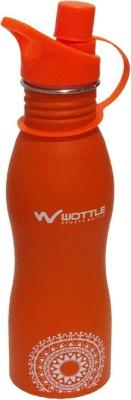 Toygully Water Bottle 700 ml