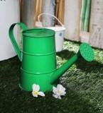 Green Girgit 1 L Water Cane (Green, Pack...