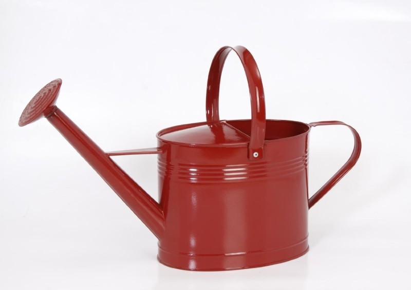 Goyal India Powder Coated 5 L Water Cane(Red, Pack of 1)