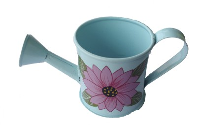 Mango Orchard Miniature & Hand Painted Sky Blue Watering Can ( 150 ml) 0 L Water Cane(Blue, Pack of 1)